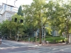 resizedimage008
