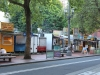 resizedimage009